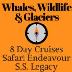 Whales, Wildlife & Glaciers