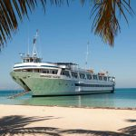 cruise vacation etiquette
