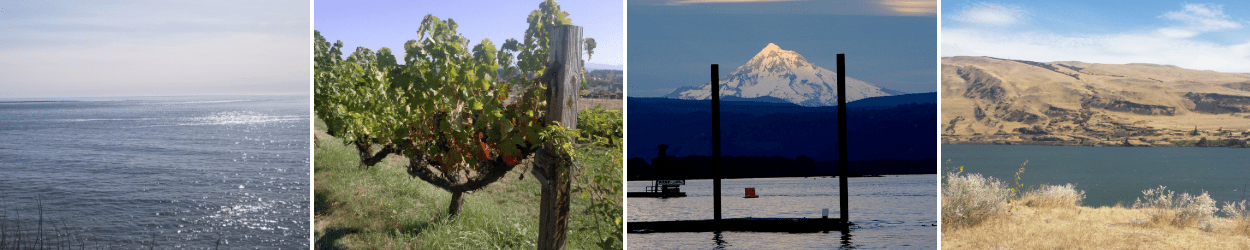 natural beauty of the pacific northwest beach ocean wine grape vineyard valley mt hood desert columbia river experts
