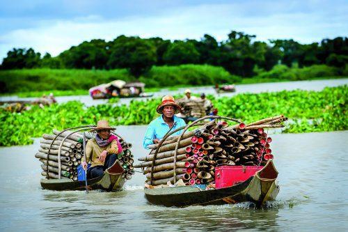 Bamboo vendor on the Mekong