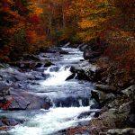 Smoky Mountains fall colors stream waterfall