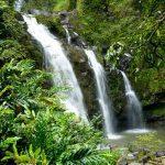 Hawaiian Waterfalls
